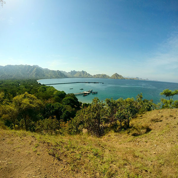 SAILING KOMODO 3H2M - NEW NORMAL